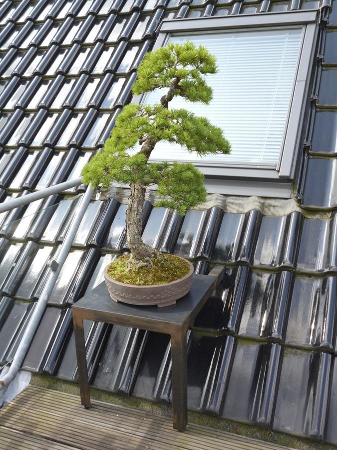 Podest für Dachschräge